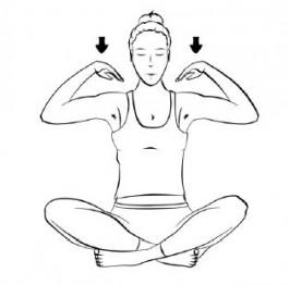 Selbstkontrolle durch entfaltete Feinfühligkeit - Yoga Übungsreihe