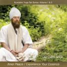 Inner Peace & Experience your Essence - Gurunam Singh komplett