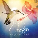 Nectar - Guru Shabad Singh komplett