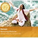 Removing Obstacles - Harnam komplett