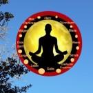 Yoga Basistext: Organe, Meridiane und Testmuskeln - PDF Datei