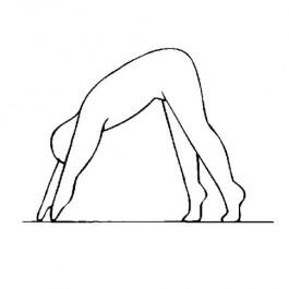 Für Innere Vitalität und Durchhaltevermögen - Yoga - Set