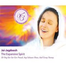 The Expansive Spirit - Jai Jagdeesh full album