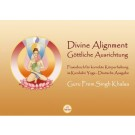 Divine Alignment Deutsch - Guru Prem Singh - eBook