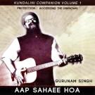 Aap Shaee Hoa (Extemded Version) - Gurunam Singh