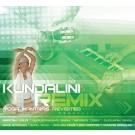 Jai Tegang (Ran Salman's Radio Remix) - Nirinjan Kaur