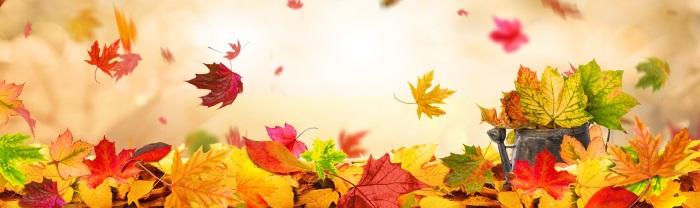 Yoga und Herbst